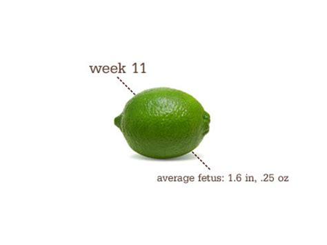 fruit 11 weeks silver lining on the horizon 11 weeks