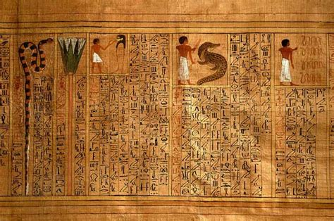 the features of the papyrus ebers books quot papyrus ebers quot