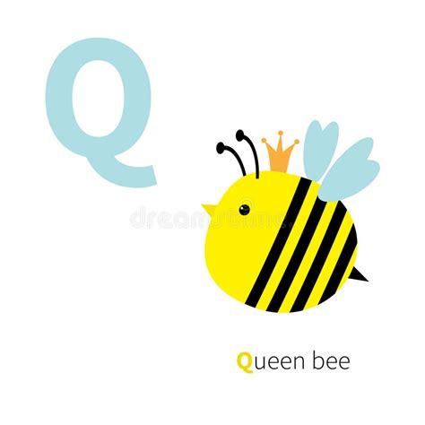 imagenes en ingles con la letra q alfabeto del parque zool 243 gico de la abeja reina de la