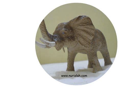 Miniatur Hewan Laut Animal Figurine naylah dan mainannya nur islah