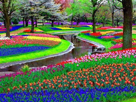 imagenes de flores y jardines jardines y paisajes con flores im 225 genes taringa