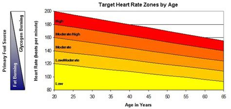 weight loss zone rate rate zone for burning