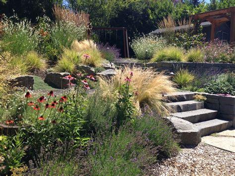 backyard habitats nw portland audubon certified backyard habitat tfgs