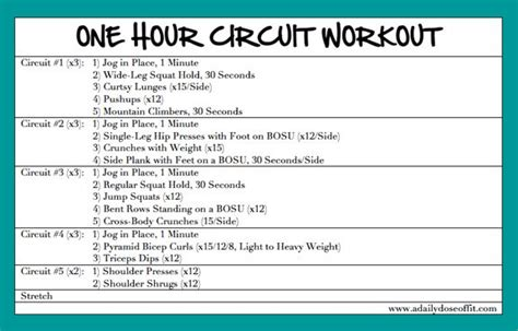 a daily dose of fit one hour circuit workout hiit