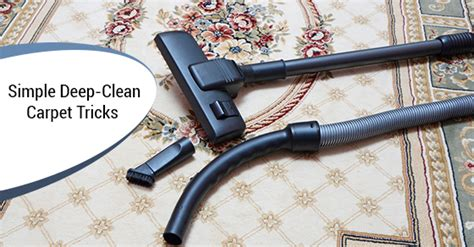 how to deep clean your carpet hirerush blog get your carpet deep cleaned with these simple steps