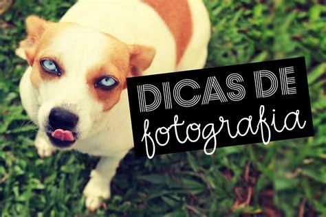 fotos para perfil legais 5 dicas para tirar fotos legais como tirar fotos legais