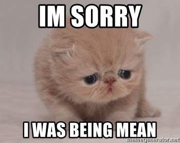 Im Sorry Meme - im sorry i was being mean super sad cat meme generator