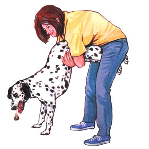 heimlich for dogs she holds s and starts to the reason