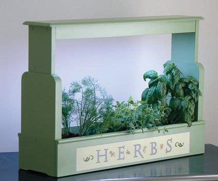 small   stay    hidden winter herbs planter
