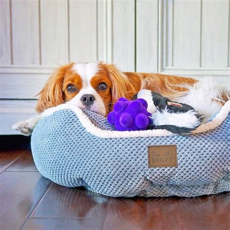 Stuft Bed by 25 Best Stuft Pet Beds Images On Pet Beds
