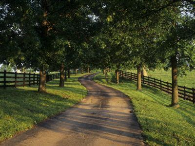 big farm house best 25 tree lined driveway ideas on