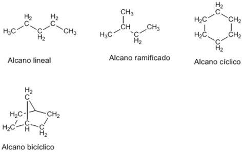 cadenas lineales alcanos organicamente funcional tipos de alcanos