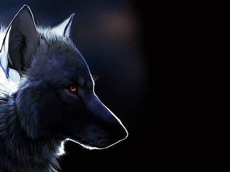 imagenes de lobos chidas lobo negro fondo de pantalla fondos de pantalla gratis