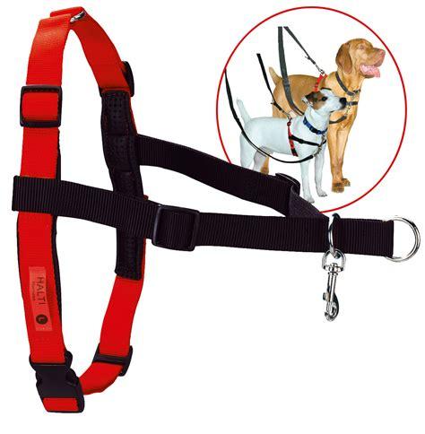 halti harness dr mugford halti harness hundegeschirr hund freizeit