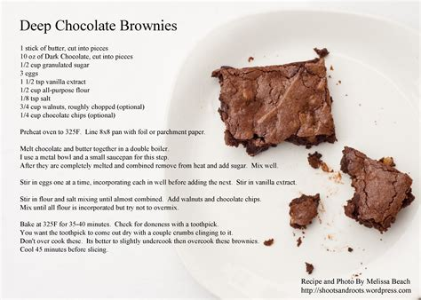 the chocolate cookbook guide to bars brownies and treats using hershey s chocolate books chocolate brownies for big boys shoots and roots
