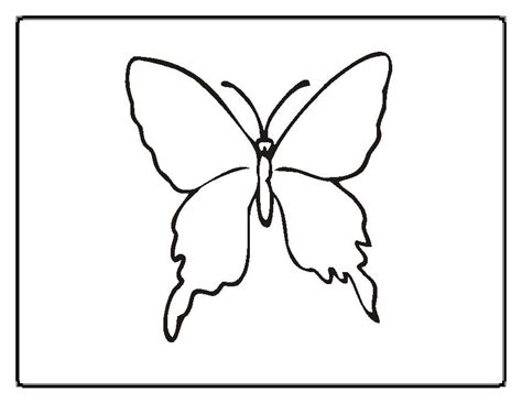 simple coloring pages of butterflies simple butterfly coloring page