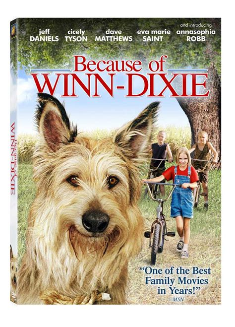 because of winn dixie pictures from the book critics because of winn dixie