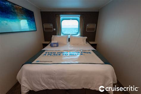 Oceanview Cabin on Norwegian Escape Cruise Ship   Cruise