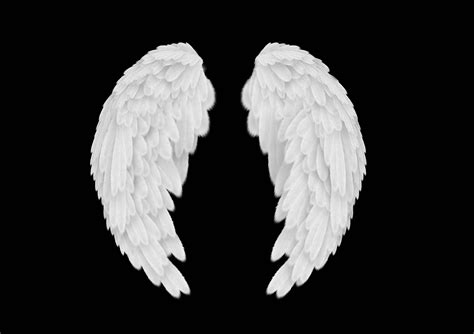 on angel wings angel wings wallpapers wallpaper cave