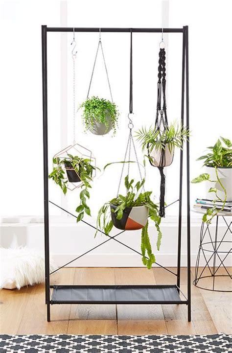 statement piece  indoor hanging plants kmart
