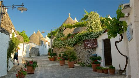 Inside Of Houses by Flowers Pictures View Images Of Alberobello