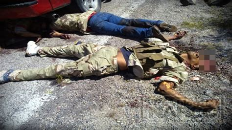 imagenes de unicornios muertos narcos muertos gallery