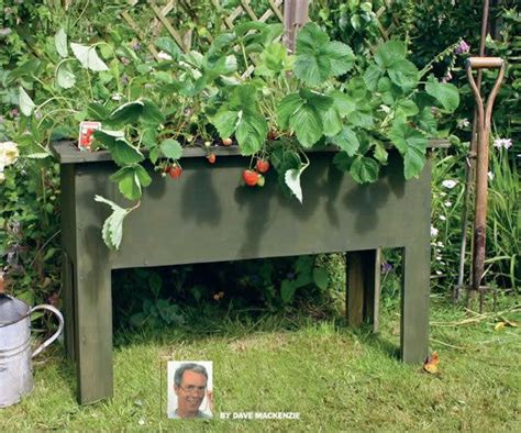 Raised Strawberry Planters an accessible garden