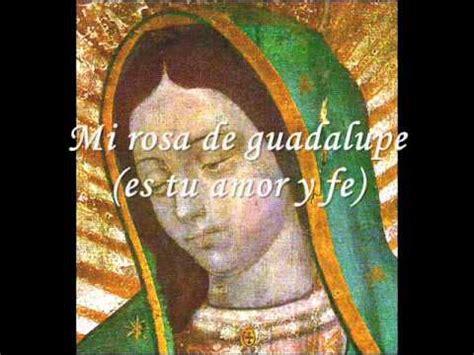 larosa de guadalupe mi rosa de guadalupe musica catolica youtube