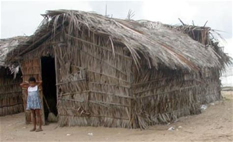 Thatch Hut Thatch Huts Picture Image By Tag