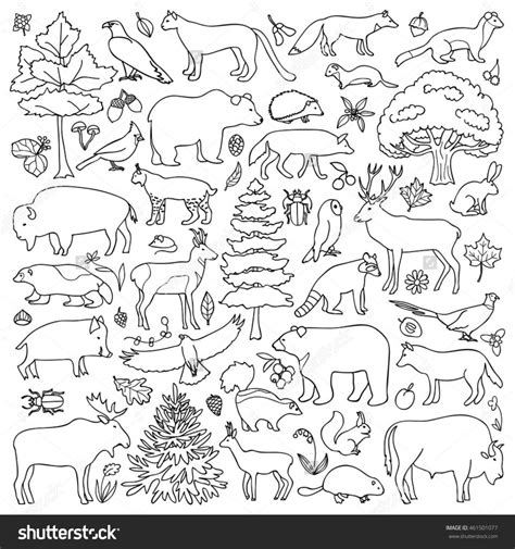 coloring pages for animals in forest color the forest holiday worksheet animals forest