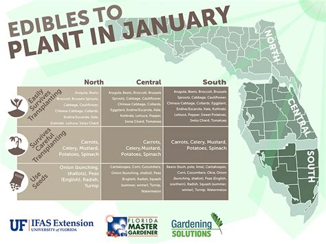 Edibles To Plant This Month Gardening Solutions Florida Vegetable Gardening Calendar