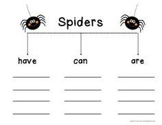 spider report organizer 1000 images about graphic organizers on pinterest