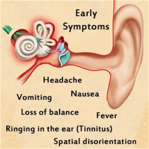 ear infection symptoms 134 best hearing explained and explored images on ears inner ear and