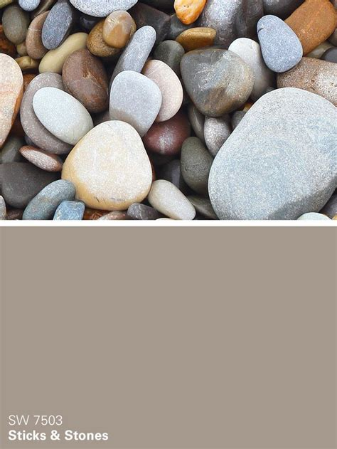 sherwin williams neutral paint color from the chrysalis collection sticks stones sw 7503