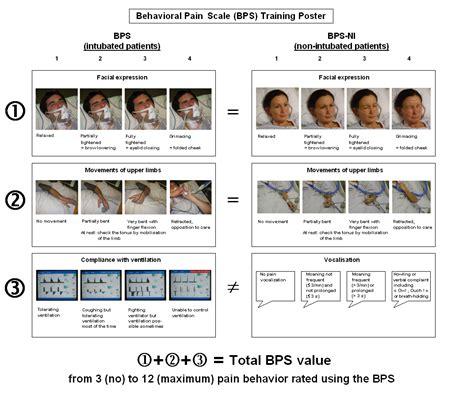 Bps Adalah sinaune perawat behavioral scale bps