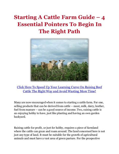Starting A Small Home Farm Starting A Cattle Farm Guide 4 Essential Pointers To