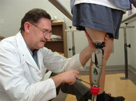 Prosthetist Education by Professions The Skeletal System