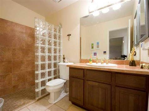 Cheap Bathroom Remodel Ideas For Small Bathrooms by Bathroom Remodel On A Budget Pinterest Home Design Ideas