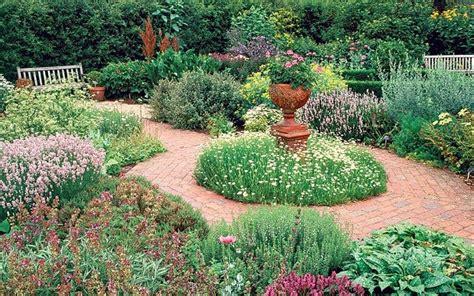 ten tips for your herb garden telegraph