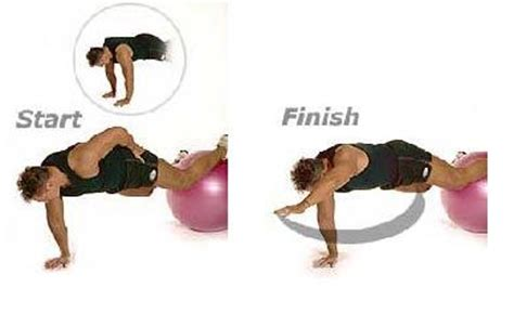 27 best images about fitball on pushing on leg workouts and triceps