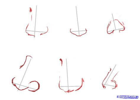 how to draw noses best photos of drawing different noses how to draw anime