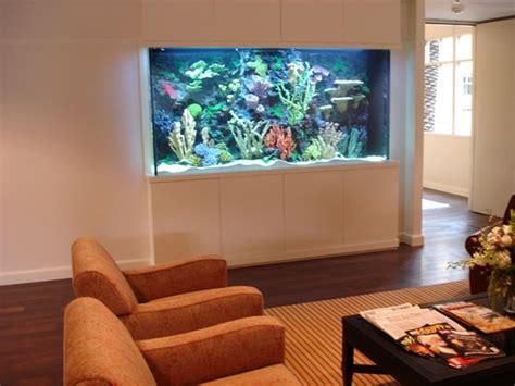 fish tank in wall amazing in wall fish tank 2017 fish fish tanks redesigning sarah
