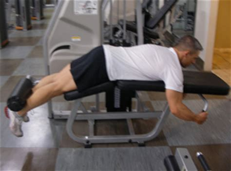 critical bench exercises lying leg curls exercise