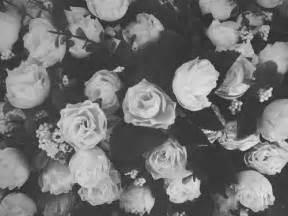 tumblr themes roses 私はあなたを愛しているけれどオフ性交