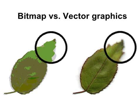eps format nedir bitmap vector2