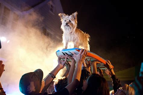 imagenes reales project x project x picture 44