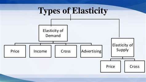 Importance Of Economics In Mba by The Importance Of Elasticity Of Demand Supply Mba