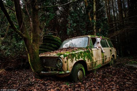abandoned world in photos which tell stories about the places
