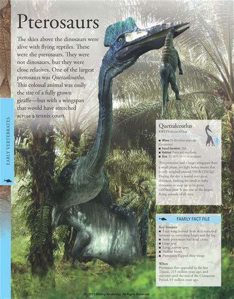 quetzalcoatlus wikipedia the free encyclopedia 31 best dinosauria 1 supersaurus images on pinterest
