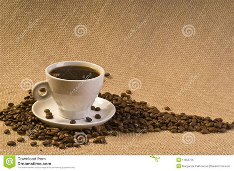 Coffee Bean Gift Card Free Drink - black coffee drink royalty free stock image image 11558756